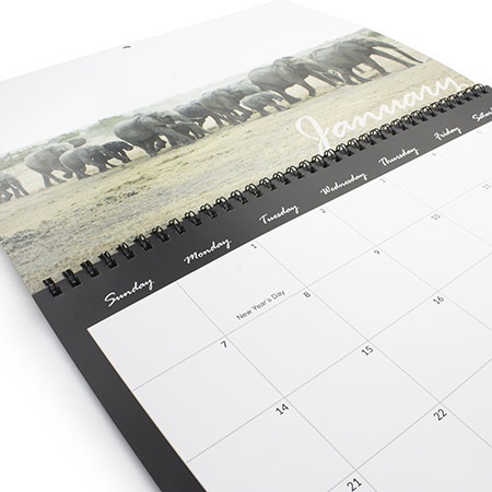 A4 Wire Bound Calendar